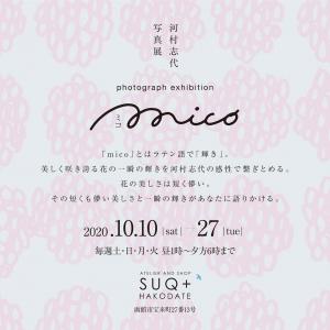Shiyo_02